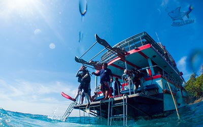 Refresher dive Phuket